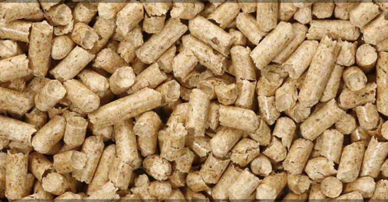 Heyl & Patterson: Wood Pellet Exports Supply Europe's Inexhaustible Need
