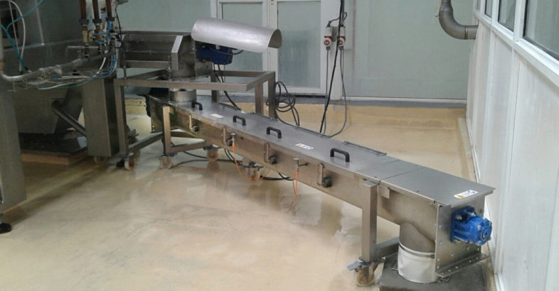 WAM Argentina: Conveying yeast from a drum drier to a packaging machine