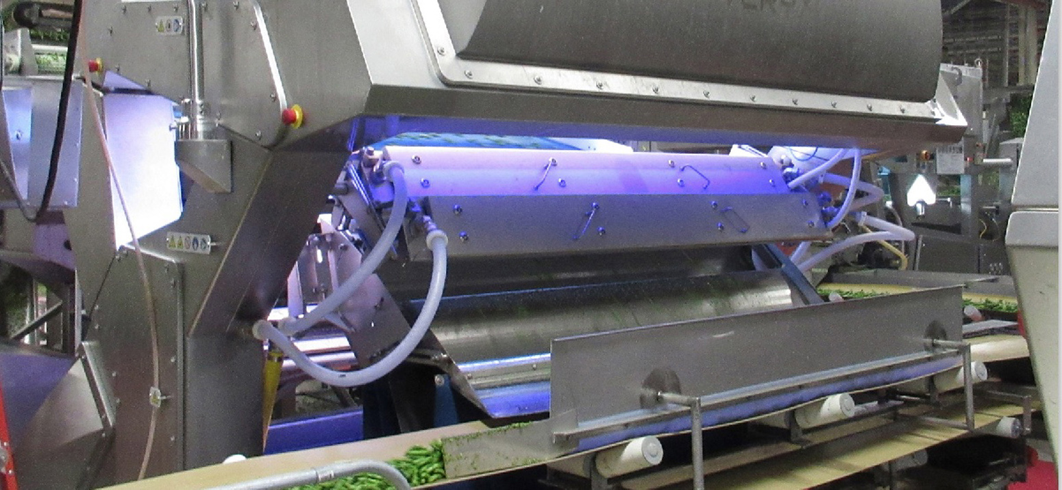 Key Technology Introduces VERYX® Digital Sorters for Green Beans