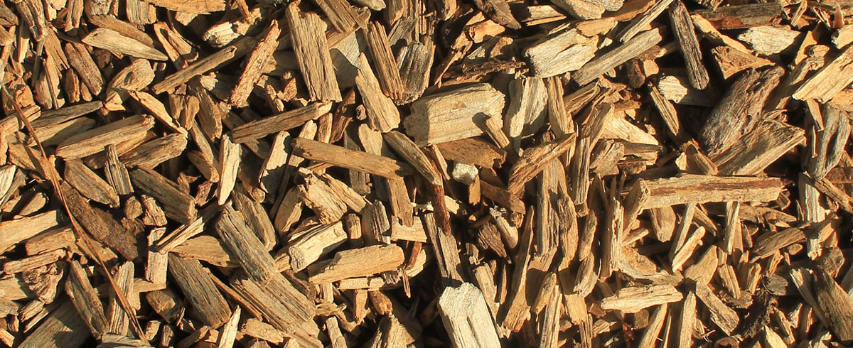 Feeding of Biomass:  Design Experience with Wood Chips