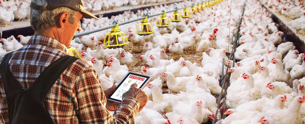 BinMaster: FeedView – Sensors and Software to simplify Feed Inventory