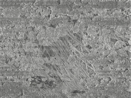 Bag House Operation Problems: Failure Patterns, Problem Identification and Solutions – Fig. 3: SEM-picture of a dense dust cake (ammonia salts) on a membrane.